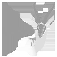Gaselle logo
